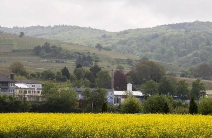 Countryside Art 1.000 Teile Puzzle Spiel Deutsch 2017 Blumen und Pflanzen